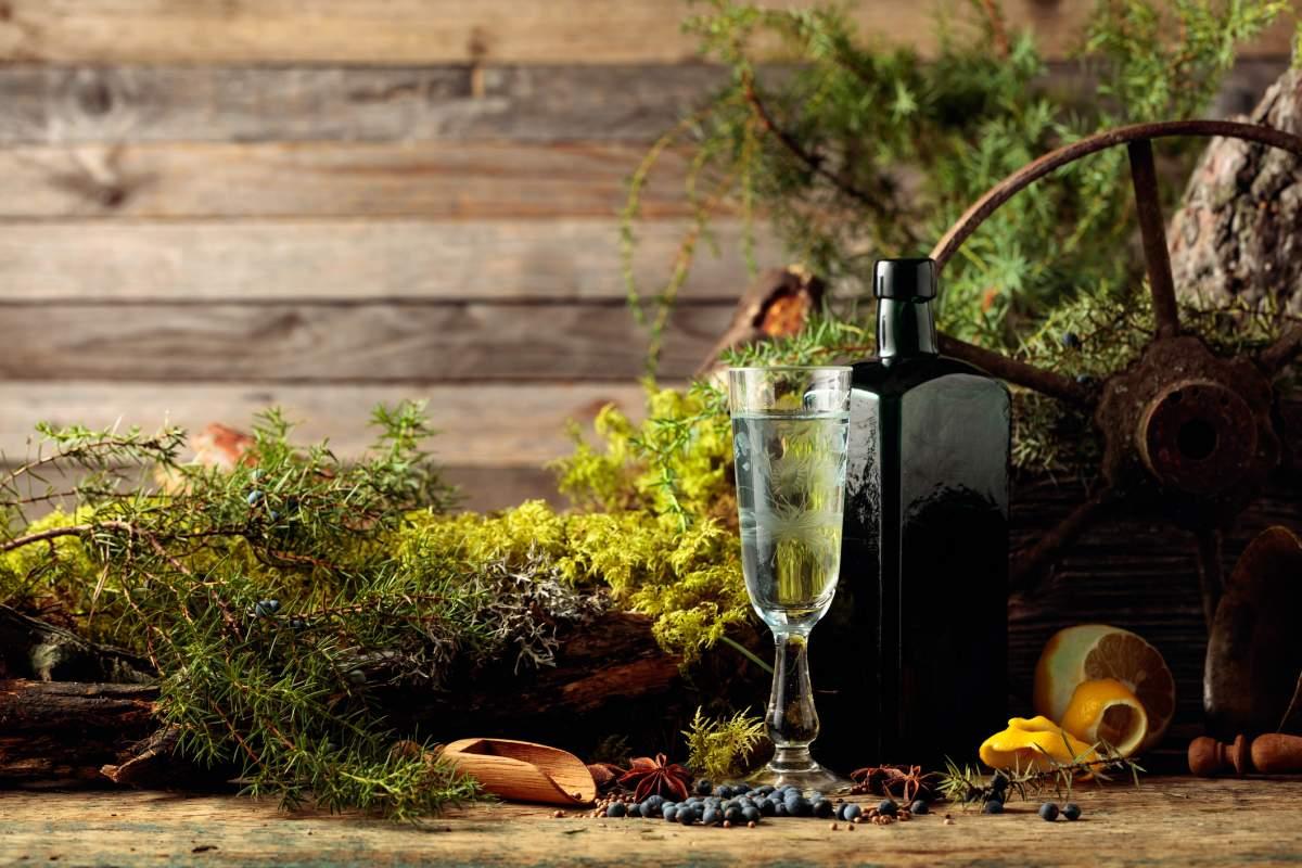 Meilleur gin en 2020 : Guide d'achat